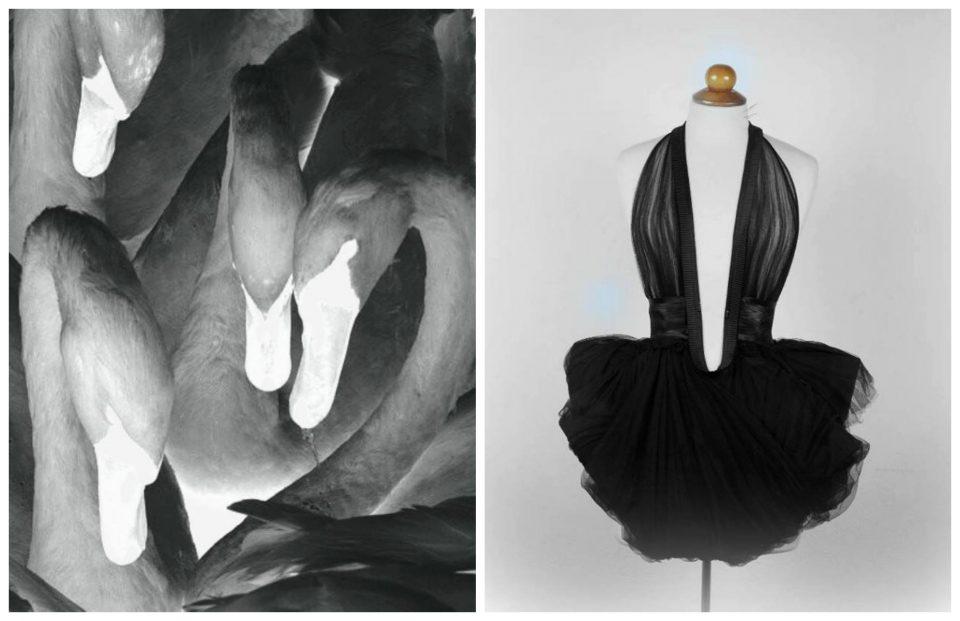 costume pour un ballet imaginaire
